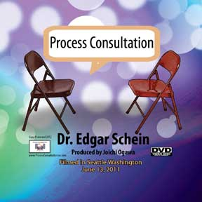 DVD-Process Consultation
